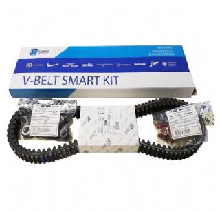V-snaar onderhoudsset MP3 500 06-13 origineel